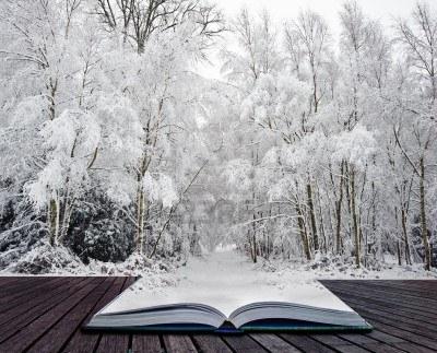 defi - Défi n°3 (décembre 2014) : Tombe, tombe la neige... Neige